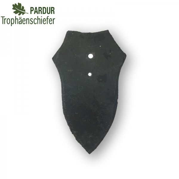 TROPHÄENSCHIEFER Rehbock, Wappenform
